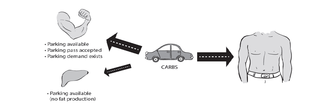 IS Carb Traffic Diagram